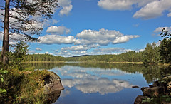 Glaskogen (yorkiemimi) Tags: blue sky cloud white lake reflection tree nature water landscape scenery sweden glaskogen