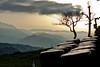 Pacas de hierba (ccc.39) Tags: sunset backlight contraluz atardecer asturias sierra árbol oviedo nube picos montañas pacas montes hierba sanestebandelascruces greaterphotographers