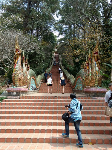 29.02 Chiang Mai (Zoo, Doi Suthep)