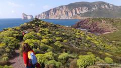DSCF2787 (SensOrizzonte Asd) Tags: trekking walking sardinia hiking nebida funtanamare masua portoferro portocorallo sportoutdoor portobanda minierenelblu sensorizzonte