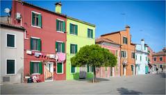 141101 burano 522 (# andrea mometti   photographia) Tags: venezia colori burano merletti