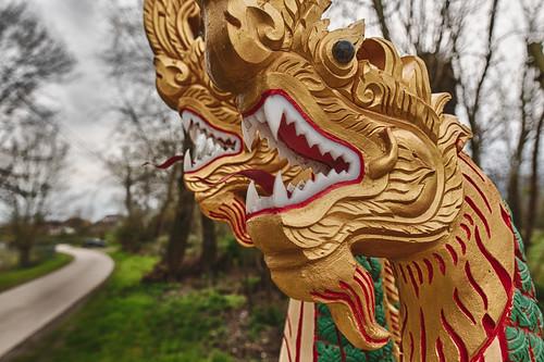 Dragon way