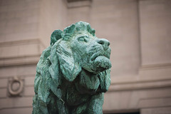"The Art Institute of Chicago Detail 8 (""Arty"" the Lion) (JMainard_Photo) Tags: life chicago detail art photo still moments arty lion 8 chitown institute indie aic the jmainard"