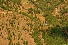 In the lap of nature (Sougata2013) Tags: india mountain landscape shelter mandi himachalpradesh shikaridevi nikond7200 janjhelivalley