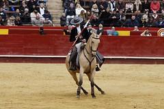 _DSC1241 (Copy) (chris30300) Tags: toros cartagena corrida ventura valence fallas vicens rejon