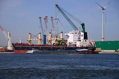 Spar Lynx (larry_antwerp) Tags: port ship belgium belgi vessel antwerp  antwerpen bulk  schip                         zuidnatie  sparlynx   esmalijn