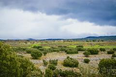17042016DSC_0113.jpg (Ignacio Javier ( Nacho)) Tags: espaa flickr paisaje es facebook castillaylen naturea sargentesdelalora