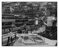Train Dreaming (GAPHIKER) Tags: reflection netherlands station train railway almere sooc almerecentrum almerecentrumrailwaystation