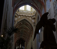 Sint-Janskathedraal, Den Bosch (Patrick Rasenberg) Tags: holland church netherlands angel europa europe cathedral god religion gothic den nederland s engel kerk brabant bosch kathedraal hertogenbosch gotisch