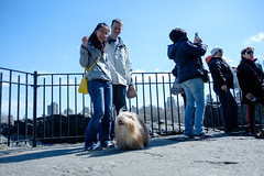 belvedere castle, central park (Charley Lhasa) Tags: nyc newyorkcity friends people dog ny newyork iso200 claire raw pattern centralpark manhattan meeting noflash cameron fujifilm gizmo lilo uncropped charley belvederecastle x70 lightroom lhasaapso nycparks aperturepriority flagged 185mm adobelightroom 0ev 0stars charleylhasa igfriends tumblrfriends fujifilmx70 lilogizmotheshihtzu dsf1300 taken160326112430 uploaded160401031639 tumblr160401 secatf28 adobelightroomcc20155 lightroomcc20155 httpstmblrcozpjiby24lub93