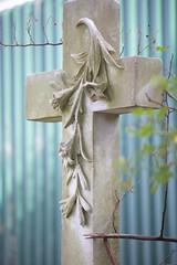 textures (feefoxfotos) Tags: flower graveyard concrete cross boltonstreetcemetery