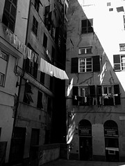 """Sunlight"" (giannipaoloziliani) Tags: street old windows light blackandwhite italy sun sunlight monochrome buildings walking lights shadows liguria details citylife streetphotography genoa genova rays biancoenero urbanstreet monocromatico oldzone streetdetails giannipaoloziliani"