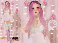 Post #1692 ( =^^=) Tags: pink cute fashion rose cat mouth blog rainbow paw shoes colorful mesh bell curtain makeup kitty twinkle polka sparkle secondlife kawaii paws jewelery dots hud hime headband frill applier pinkatude sashakittehwildrose