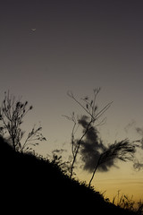 """the moon and the sunset saying """"hello& goodbye"""" (PiperMclean) Tags: sunset moon landscape explore"""