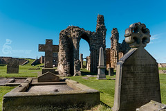 Tynemouth Priory 45 (View From The Chair Photography) Tags: monument graveyard landscape architechture ruin graves priory