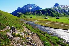 sunny day (welenna) Tags: blue schnee summer sky mountain snow mountains alps landscape switzerland view swiss blumen berge bach alpen blume berneroberland adelboden engstligenalp schwitzerland