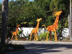 DSCN8464 (Dale_Wiley) Tags: art metal statues giraffe horseshoes