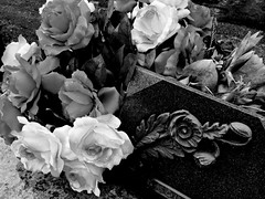 Memorial Roses (Broot - Thanks for a half million views!!) Tags: blackandwhite bw plant paris flower monochrome cemetery grave rose spring memorial mourning tomb offering april tribute montparnasse grief