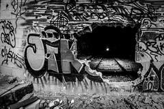 Petite ceinture 6 (charles.enchine) Tags: street urban streetart paris tag railway tunnel urbanexploration urbanjungle exploration urbex abbandonned