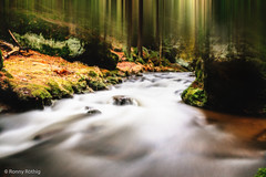 Forest of the Elves (Ronny Rthig) Tags: water forest eos republic czech sigma 1750 romantic dreamy wald elfen longtime 70d elben khaatal