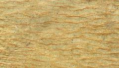 Flaser bedding (Dietmar Down Under) Tags: australia nsw southcoast illawarra latepermian illawarracoalmeasures 253263ma