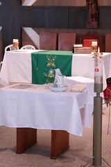 07_fev 2016 BatizadoLvia (28) (Julio Fernandes de Almeida) Tags: sofia ivan batizado henrique parquia zenaide socristvo lvia batismo calau tathiane