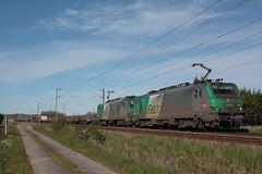 BB 27054 + BB 27067 / Socx (jObiwannn) Tags: train locomotive prima fret ferroviaire
