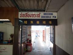 P1092346 (tatsuya.fukata) Tags: elephant thailand crocodile samutprakan crocodilefarm