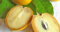 Abiu | Information, Equivalents, Nutrition, and Substitutions (cookingsoftwareoz) Tags: tropicalfruit luma abiu caimito aboi pouteriacaimito abiufruit abiupouteriacaimito buyingandstoringabiu preparingandservingabiu tropicalfruitfood