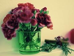 Fleur Pho (Snia Pereda) Tags: barcelona flowers green water beautiful 35mm restaurant decoration fragile ephemeral efmero nikond5300