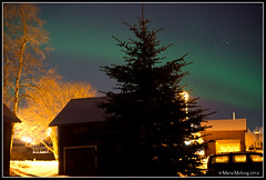 Northern lights (mmoborg) Tags: sky night stars himmel natt northernlights norrsken stjärnor mmoborg