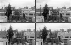 LIMG_7939 (qpkarl) Tags: blackandwhite bw stereoscopic stereogram stereophoto stereophotography 3d pinhole stereo stereoview stereograph stereography stereoscope stereoscopy stereographic