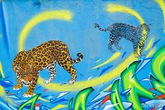 Street-art - Mosko (Dicksy93) Tags: street urban paris france art animal wall seine canon painting eos graffiti europe paint outdoor couleurs tag dessin peinture graff 75 mur extrieur iledefrance bombing ville carnivore flin fauve 19me panthre mosko 650d img2348 dicksy93 pressionisme