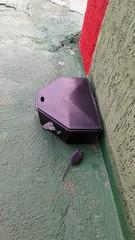20150416_081851 (dedetizadoratservfranquia_tserv) Tags: pra porta rato ratos isca gaiola roedores tserv raticida