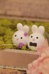 Bunny and Rabbit wedding cake topper (charles fukuyama) Tags: wedding bunny clay lapin kaninchen coniglio  weddingcaketopper  customcaketopper cuterabbit forestwedding handmadecaketopper animalscaketopper rabbitcaketopper mochiegg