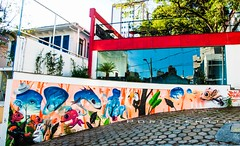 Faa arte... (Centim) Tags: cidade minasgerais espelho brasil nikon foto br arte capital mg belohorizonte fotografia pintura bh grafite estado amricadosul pas sudeste d90 continentesulamericano