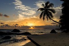 2016 Silhouette Sunrise (jeho75) Tags: silhouette zeiss sunrise island sony seychelles sonnenaufgang hängematte seychellen ilce 7m2