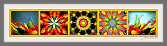 Chihuly Collage (Give compassion to yourself) Tags: chihuly colors collage simone frame