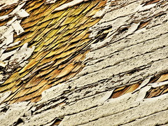 1 Exterior Callapse (Mertonian) Tags: brown white abstract art texture beauty canon 1 design chaos exterior decay powershot collapse weathered material hs sore ceder sx60 mertonian canonpowershotsx60hs robertcowlishaw 1exteriorcollapse