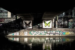 Butterfly (tomabenz) Tags: vienna wien street urban streetart photography sony streetphotography vienne sonya7rm2 a7rm2