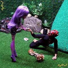 311. Vol.1/Ep.XXIX (OylOul) Tags: monster high doll action cam figure 16 create custom