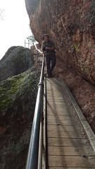 Fred crossing a CCC-made bridge in Pinnacles NP