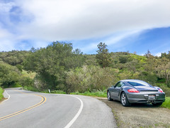 Lunchtime Twisties (Robert Windel) Tags: ca porsche cupertino caymans