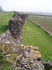 Walls of Roman Venta Silurum, Caerwent Roman Town. (greentool2002) Tags: