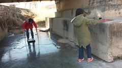 썰매보다 더 좋은 얼음   시골집 풍경 (LeeWonHee) Tags: 겨울 해 얼음 시골집 솔 장바우