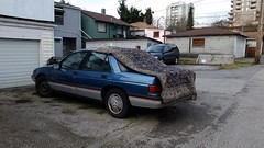 magic carpet ride (SqueakyMarmot) Tags: car vancouver alley burnaby rug suburb carpeting backlane
