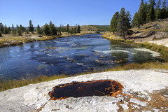 River Group: Baby Bath Spring (Chief Bwana) Tags: forest river yellowstonenationalpark yellowstone wyoming geyser nationalparks hotspring wy babybath fireholeriver thermalarea lowergeyserbasin geyserbasin rivergroup psa104 chiefbwana babybathspring