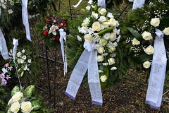 2016_Temetés_0682 (emzepe) Tags: flower words hungary text wreath funeral script ungarn virág commemorative gyula 2016 hongrie szent tél józsef január temető búcsú felirat katolikus megemlékezés szalag temetés koszorú búcsúzás németvárosi búcsúzó