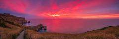 Tunnel Beach Sunrise (Stefan Nikoloff - Photography) Tags: new blue red sea cliff beach water grass clouds sunrise fence seaside bush nikon rocks long exposure waves path tunnel zealand d750 otago dunedin 2470mm