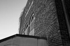 growth (fallsroad) Tags: door blackandwhite bw building abandoned architecture doors decay synagogue tulsaoklahoma templeisrael nikond7000